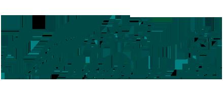 لوگوی هواپیمایی ماهان